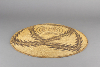 Achumawi%20artist%2C%20%3Cb%3E%3Ci%3E%20Basketry%20tray%3C%2Fi%3E%3C%2Fb%3E%2C%20ca.%201900%2C%20tule%20root%2C%20bulrush%2C%20and%20maidenhair%20fern%2C%20Gift%20of%20Mrs.%20Ferdinand%20C.%20Smith%20and%20Mr.%20L.%20Hawley%20Hoffman%2C%20no%20known%20copyright%20restrictions%2C%2043.1.51
