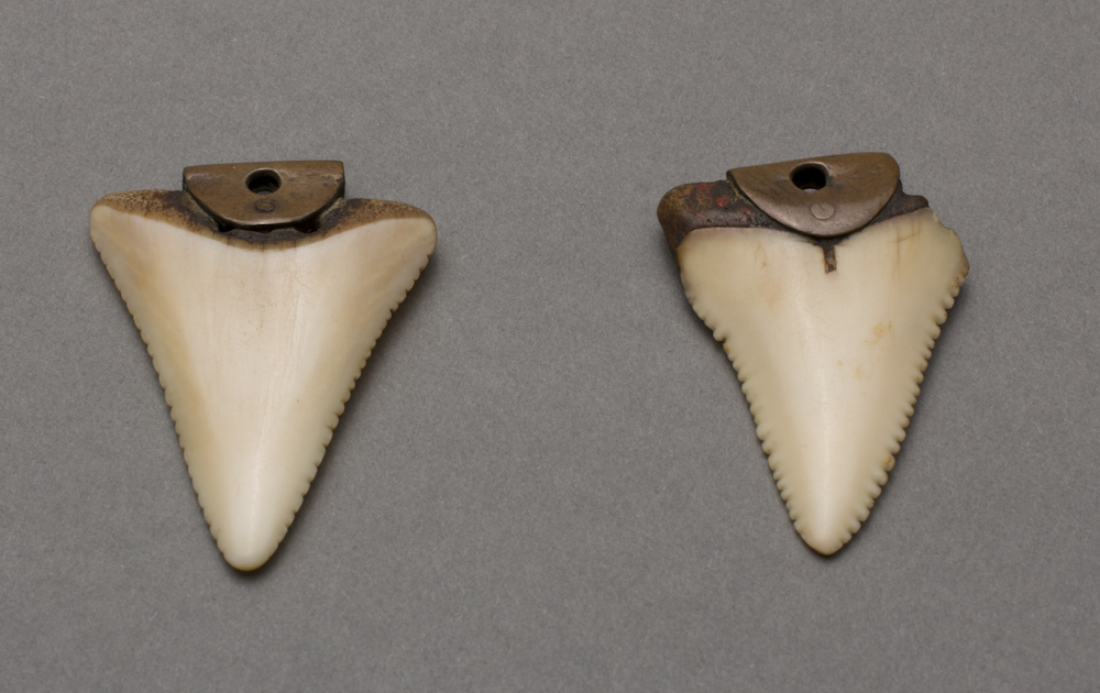 Tlingit%20artist%2C%20%3Cb%3E%3Ci%3E%20Earrings%3C%2Fi%3E%3C%2Fb%3E%2C%20ca.%201900%2C%20shark%20teeth%20and%20copper%2C%20Museum%20Purchase%3A%20Indian%20Collection%20Subscription%20Fund%2C%20Rasmussen%20Collection%20of%20Northwest%20Coast%20Indian%20Art%2C%20no%20known%20copyright%20restrictions%2C%2048.3.803A%2CB