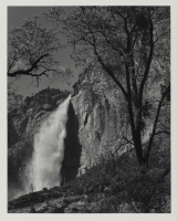 Ansel%20Adams%2C%20%3Cb%3E%3Ci%3E%20Yosemite%20Falls%2C%20Spring%3C%2Fi%3E%3C%2Fb%3E%2C%201983%20%28print%29%2C%20gelatin%20silver%20print%2C%20Bequest%20of%20Fae%20Heath%20Batten%2C%20%26%23169%3B%20artist%20or%20other%20rights%20holder%2C%201997.58.6