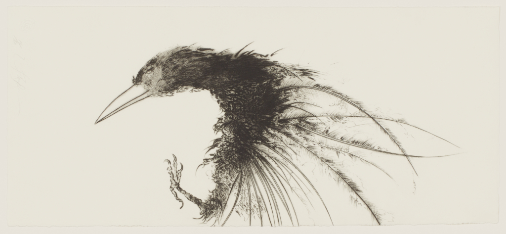 Frank%20Boyden%2C%20%3Cb%3E%3Ci%3E%20Desiccated%20Crow%3C%2Fi%3E%3C%2Fb%3E%2C%201997%2C%20drypoint%20on%20paper%2C%20Gift%20of%20the%20Artist%2C%20%26%23169%3B%201997%20Frank%20Boyden%2C%202004.9.15