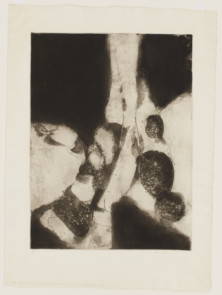 Frank%20Boyden%2C%20%3Cb%3E%3Ci%3E%20Untitled%3C%2Fi%3E%3C%2Fb%3E%2C%201965%2C%20etching%20and%20aquatint%20on%20Grumbacher%20paper%2C%20Gift%20of%20the%20Artist%2C%20%26%23169%3B%201965%20Frank%20Boyden%2C%202006.6.2